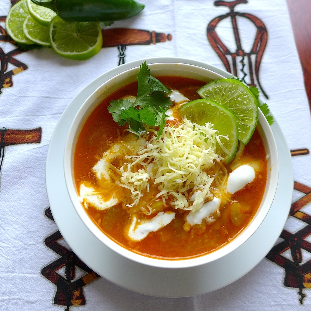 Easy Tex-Mex Chicken Soup
